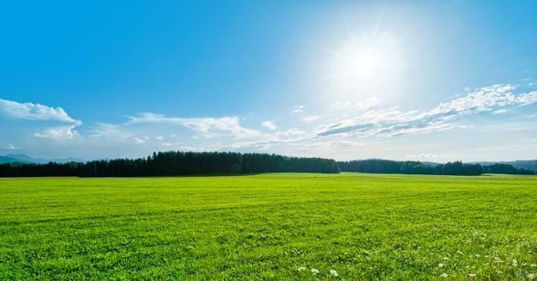 zon maakt gelukkig